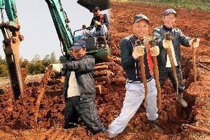 重労働な収穫作業